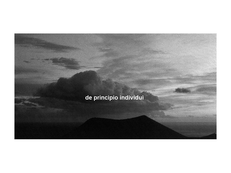 DePrincipio1