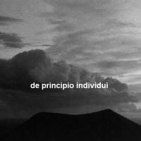 7_De Principio Individui